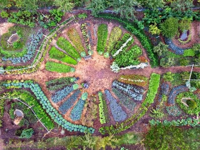 Création d'un jardin mandala permacole (partie 1)